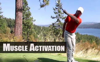 Golf Biomechanics - Muscle Activation in the Swing