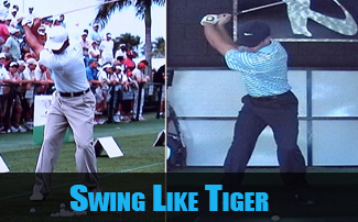 Golf Biomechanics of Tiger Woods Swing