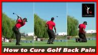 RSA Webinar 2 - Golf Back Pain Fix